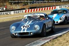 Le-Mans-2014-06-07-237.jpg