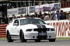 Mustang-Norton-2014-02-01-023.jpg