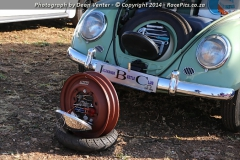 Cars-in-the-Park-2014-038.jpg
